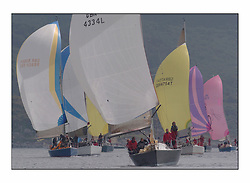 Racing at the Bell Lawrie Yachting Series in Tarbert Loch Fyne. Sunday racing was dominated by light winds...Mumm 36 Absolutely 2 GBR4334L.