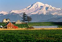Mt. Baker, Farmland, Whatcom County, Washington State, Cover of Whatcom Places Land Trust Book