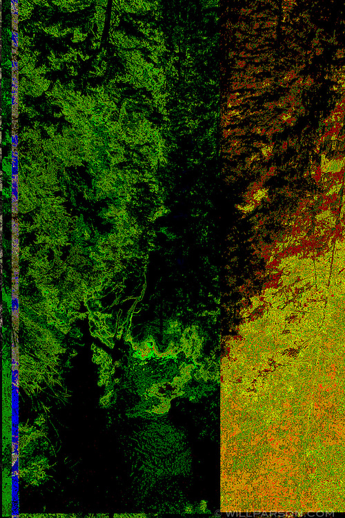 A corrupted view of Lynn Canyon Park in North Vancouver, British Columbia, Canada.