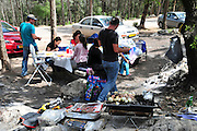 Israel, Carmel Mountain's pine tree Forest Family picnics in the forest