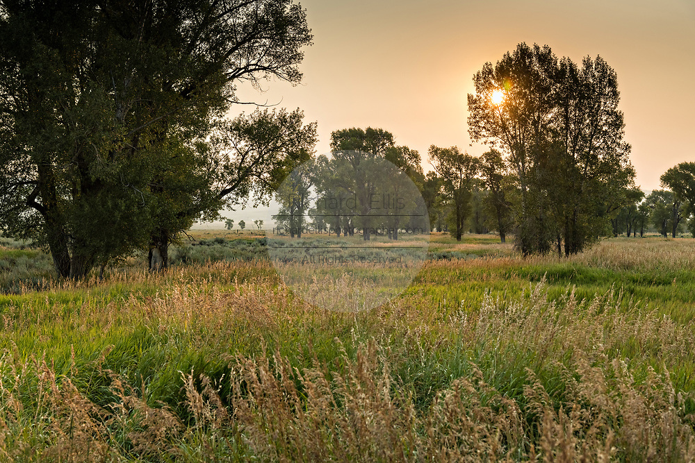 Sunrise over the fields at the Mormon Row Historic District in Grand Teton National Park, Wyoming.