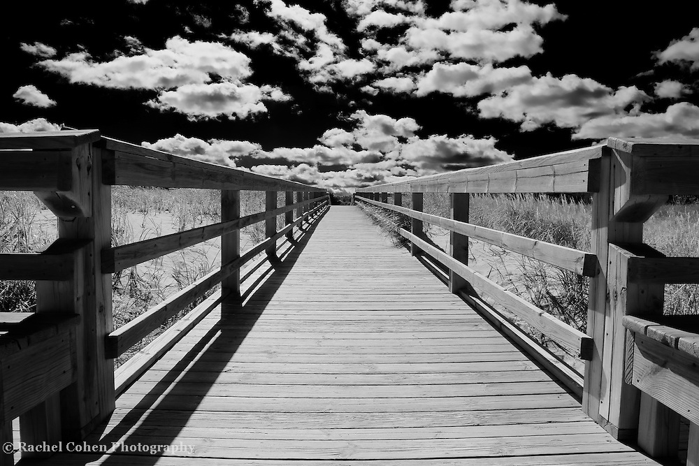 """""""Skies of Grand Marais"""" B&W<br /> <br /> Deep contrasting black and white image of the boardwalk in Grand Marais Michigan.<br /> A walk into the clouds!!<br /> <br /> Black and White Images by Rachel Cohen"""