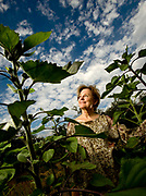 Alice Waters, the Berkeley, California chef who founded the farm to table movement 45 years ago at her Bay Area restaurant Chez Panisse.
