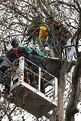 © Licensed to London News Pictures. 28/01/2021. London, UK. Bailiffs in a hoist talk to HS2 Rebellion protestors (R) remaining in a tree above Euston Square Gardens. Protestors are resisting a police operation to remove them for a second day. It is reported the protesters have built a 100ft tunnel under the gardens. Photo credit: Peter Macdiarmid/LNP