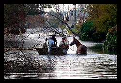5th Sept, 2005. Hurricane Katrina aftermath. New Orleans. Animal rescue boat. A horse is rescued from the devastating floods in Uptown New Orleans by the Kentucky Dept of Fish and Wildlife Dept.