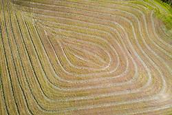 THEMENBILD - Heuschwaden, natürliche Muster in einer Wiese. Zuvor hat der Bauer das trockene Heu zu einer Schwade mit einem Traktor und Kreiselschwader zusammengefassen. Aufgenommen am Sonntag 5. Juli 2020 in Kals am Grossglockner, Oesterreich // FHay swaths, natural patterns in a meadow. Previously, the farmer had combined the dry hay into a swath with a tractor and a rotary swather. Kals, Austria on Sunday July 5, 2020. EXPA Pictures © 2020, PhotoCredit: EXPA/ Johann Groder