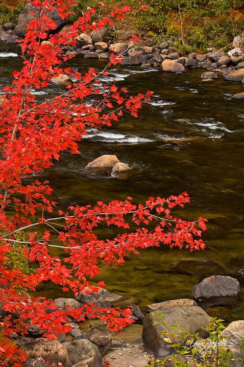 Rapids in Little White River, Iron Bridge to Elliot Lake, Ontario, Canada