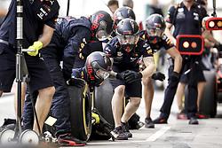 March 30, 2019 - Sakhir, Bahrain - Motorsports: FIA Formula One World Championship 2019, Grand Prix of Bahrain, ..Mechanic during pit stop  (Credit Image: © Hoch Zwei via ZUMA Wire)