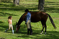 Middletown, New York - A young girl runs up to a rider and her horse at the 70th annual Middletown Rotary Horse Show at Fancher-Davidge Park on Sept. 8, 2013.