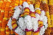 India-Varanasi Flowers