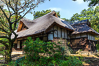 Thatching in Japan has long been used for the roofs of farm houses, traditional homes, temples and shrines. As modernization increases, thatching has been rapidly disappearing in Japan.  Thatched roofs have both heat insulating properties and the material is a sustainable plant resource. Thatch in Japan is typically made of eulalia, rice straw, wheat straw, bamboo grass, cedar bark or water reeds.