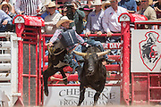 Bull rider Kody DeShon is thrown from Kat Man at the Cheyenne Frontier Days rodeo at Frontier Park Arena July 24, 2015 in Cheyenne, Wyoming. Frontier Days celebrates the cowboy traditions of the west with a rodeo, parade and fair.