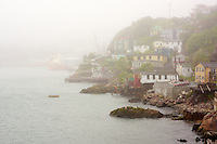 Houses along the coast of St. John's harbour on a foggy day.
