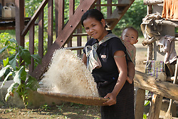 A mother with her small child threshes and chafs new rice (the first of the season) to make an offering to the temple, Ban Phonthong, Bolikhamsay Province Lao PDR