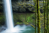Silver Falls State Park, OR.