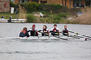 Crew: 446  SUA-HODGSON  Stratford-upon-Avon Boat Club  Op J13 4x+<br /> <br /> Abingdon Spring Head 2019<br /> <br /> To purchase this photo, or to see pricing information for Prints and Downloads, click the blue 'Add to Cart' button at the top-right of the page.