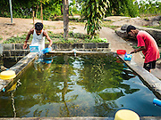 10 MAY 2016 - TA TUM, SURIN, THAILAND: Men bathe at the cistern people use for bathing at the artesian well in Ta Tum, Surin, Thailand. The well is the most important source of drinking water for thousands of people in the communities surrounding it.  In the past many of the people had domestic water piped to their homes or from wells in their villages but those water sources have dried up because of the drought in Thailand. Thailand is in the midst of its worst drought in more than 50 years. The government has asked farmers to delay planting their rice until the rains start, which is expected to be in June. The drought is expected to cut Thai rice production and limit exports of Thai rice. The drought, caused by a very strong El Nino weather pattern is cutting production in the world's top three rice exporting countries:  India, Thailand and Vietnam. Rice prices in markets in Thailand and neighboring Cambodia are starting to creep up.    PHOTO BY JACK KURTZ