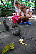 Two Australian tourist children (5 years old and 9 years old) watching baby long-tailed macaques (Macaca fascicularis), also known as crab-eating macaques. Sacred Monkey Forest of Padangtegal, Ubud, Bali, Indonesia