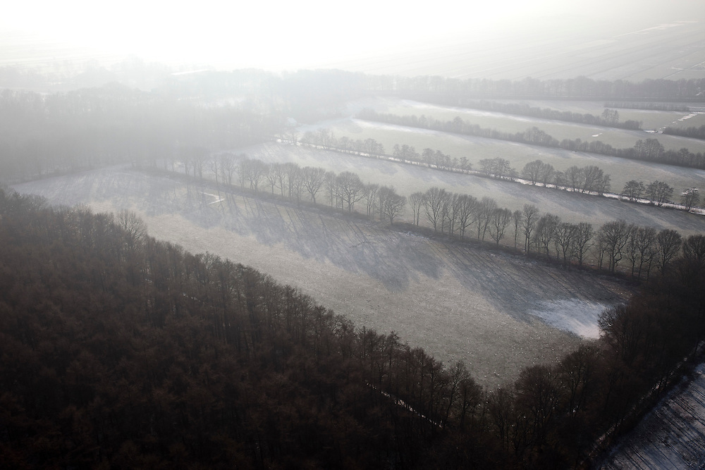 Nederland, Noord-Holland, Hilversum, 07-01-2010; het bos Einde Gooi,  de laatste bomen in de mist en met tegenlicht en op de grens van de veenweide polders .Einde Gooi ('End Gooi'), trees in the fog and backlight on the border of the peat polders.luchtfoto (toeslag), aerial photo (additional fee required).foto/photo Siebe Swart