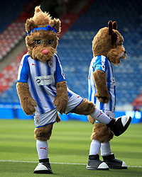Huddersfield Town mascots Tilly the Terrier (left) and Terry the Terrier before the Premier League match at the John Smith's Stadium, Huddersfield.
