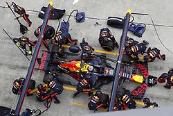 October 1, 2017 - Sepang, Malaysia - Motorsports: FIA Formula One World Championship 2017, Grand Prix of Malaysia, ..#3 Daniel Ricciardo (AUS, Red Bull Racing) (Credit Image: © Hoch Zwei via ZUMA Wire)