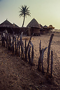 Nioro du Sahel, poor fences to protect the villages from sandstorm and desertification.