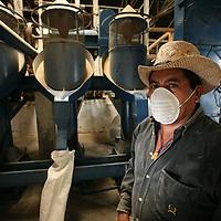 Cristóbal Gonzalez Campo operates the milling machines at El Jabalí. Cooperativa El Jabali is a certified Fairtrade coffee producer based in El Salvador.