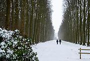 Eerste sneeuwstorm in ruim tien jaar. Het KNMI geeft code rood af
