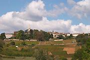 vineyard the village aluze mercurey burgundy france