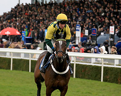 Jammin Masters ridden by Gavin Sheehan during the Marstons 61 Deep Midlands Grand National race at Uttoxeter Racecourse.