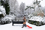 Local woman pulling her sledge out and about enjoying the snow in Kings Heath Park on 24th January 2021 in Birmingham, United Kingdom. Deep snow arrived in the Midlands giving some light relief and fun during the current lockdown for people who simply enjoyed the weather.