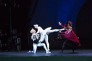 Siegfried is protective of Odette as Von Rothbart tries to interfere. Odette, as are all the dancers in Les Ballets Trockadero de Monte Carlo, is  played by a man.