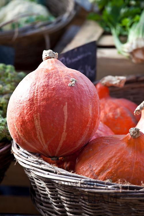 Pumpkin squash at food market in France