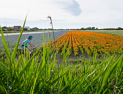 Mature woman riding bicycle through rural fields