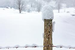 THEMENBILD - ein Zaun mit Schnee bedeckt, aufgenommen am 03. Februar 2018, Kaprun, Österreich // a fence covered with snow on 2018/02/03, Kaprun, Austria. EXPA Pictures © 2018, PhotoCredit: EXPA/ Stefanie Oberhauser