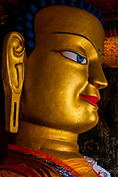 Shakyamuni Buddha statue (second largest in Ladakh), Shey Palace, Leh Valley, Ladakh, Jammu and Kashmir State, India.