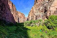 Hiking on the Havasu Falls Trail in Supai, Arizona.