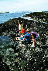 CA: Chiildren at tide pool at Fitzgerald Beach Park, San Mateo County, model released  .Photo: cabea2102..Photo copyright: Lee Foster, 510-549-2202, lee@fostertravel.com, www.fostertravel.com