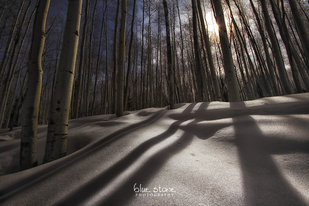 Winter aspens and shadows on snow create a dreamstate quality.<br /> <br /> Wall art is available in metal, canvas, float wrap and standout. Art prints are available in lustre, glossy, matte and metallic finishes.