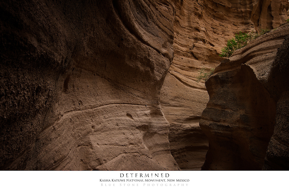 20x30 poster print of the play of light and shadow highlights the unique geology of the slot canyon at Kasha Katuwe National Monument in New Mexico.