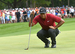 August 12, 2018 - St. Louis, Missouri, U.S. - ST. LOUIS, MO - AUGUST 12: Tiger Woods lines up a putt on the #1 green during the final round of the PGA Championship on August 12, 2018, at Bellerive Country Club, St. Louis, MO.  (Photo by Keith Gillett/Icon Sportswire) (Credit Image: © Keith Gillett/Icon SMI via ZUMA Press)