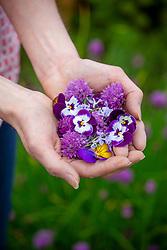 A handful of edible flowers
