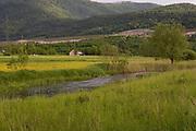 The River Gacka a limestone stream with abundant aquatic life, Croatia. Part of a story on Croatia's hidden landscape and undiscovered tourism.