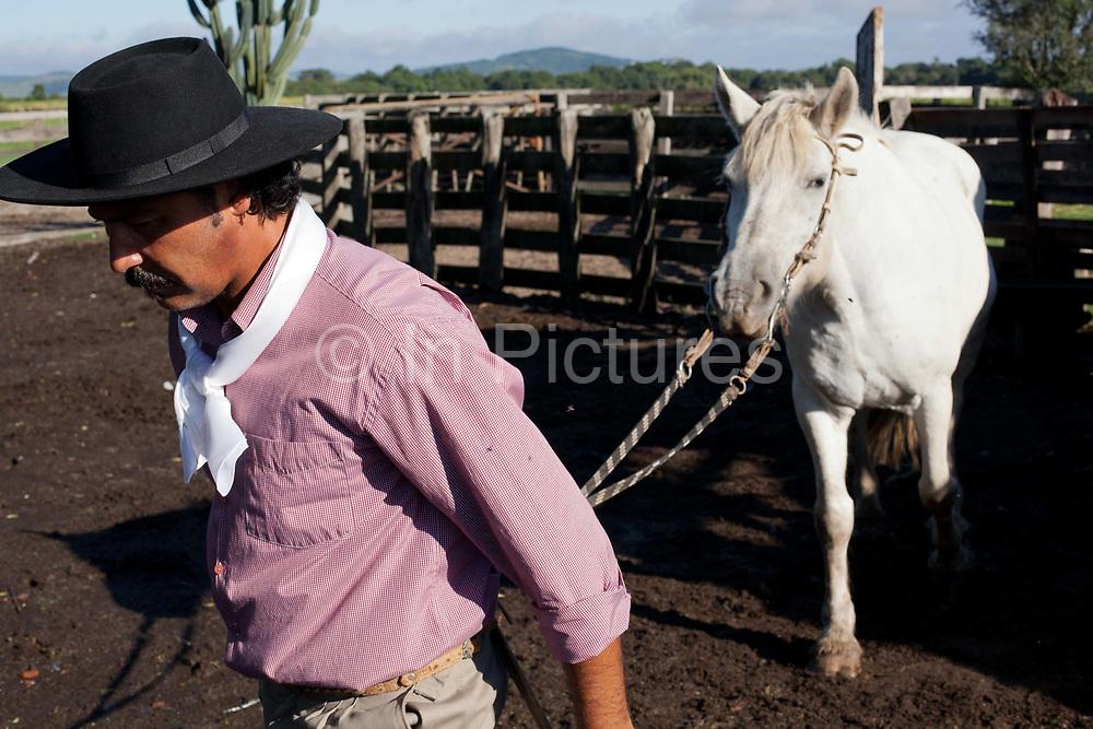 Brazilian male Gaucho cowboy leading his horse out of the stables into the paddock. Working Gaucho Fazenda in Rio Grande do Sul, Brazil.