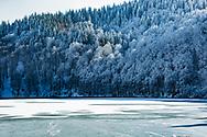 Winter an Nature, Pavin lake, Auvergne, France.