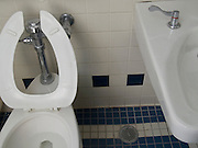 toilet with sink