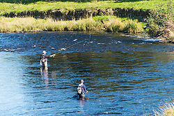 © Licensed to London News Pictures. 27/09/2020. Builth Wells, Powys, Wales, UK. Two anglers take to the river Wye at Builth Wells in beautiful warm sunny autumnal weather after temperatures dropped to around 2.5 deg C last night near Builth Wells in Powys, UK. Photo credit: Graham M. Lawrence/LNP