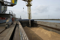 Bio-mass, is unloaded from a barge at the Essent Energie power station, in Geertruidenberg, Netherlands, on Monday March 22, 2010. Bio-mass or compressed wood, is added to the coal for a cleaner burn, in an effort to make the production of electricity more environmentally friendly. Essent Energie is owned by RWE AG. (Photo © Jock Fistick)