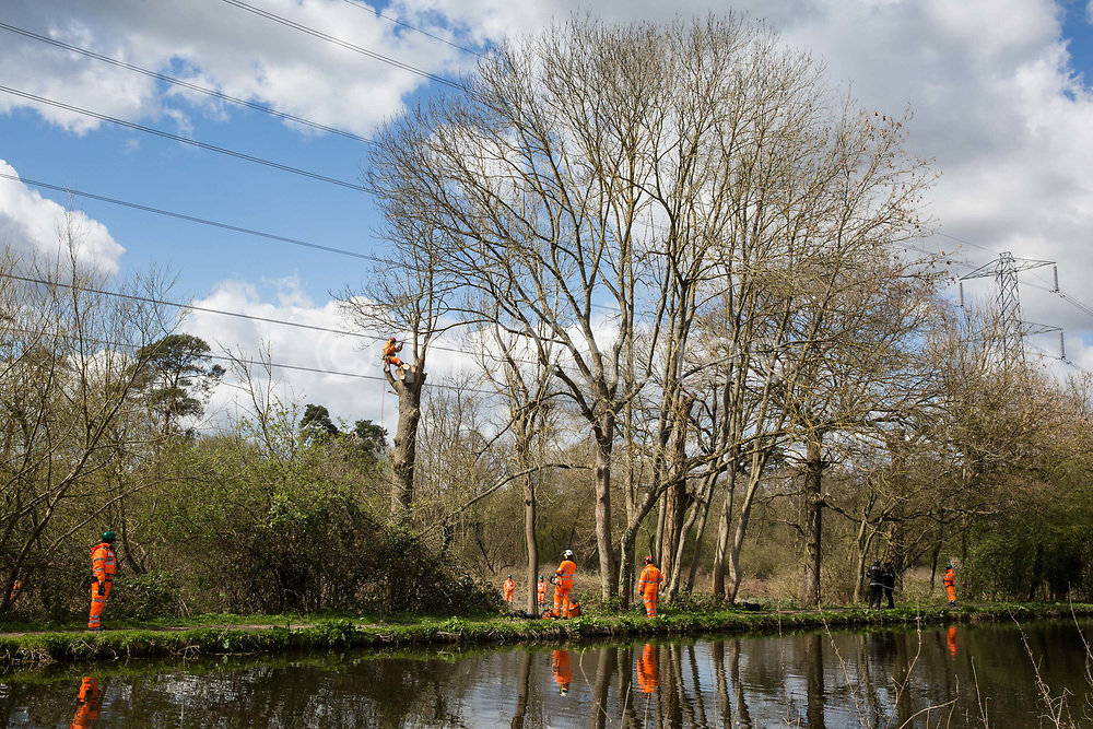 A tree surgeon fells a tree alongside the Grand Union Canal for electricity pylon relocation works in Denham Country Park connected to the HS2 high-speed rail link on 6th April 2021 in Denham, United Kingdom. Large swathes of the Colne Valley have been cleared of trees and vegetation for HS2 works which will include the construction of a Colne Valley Viaduct across lakes and waterways.