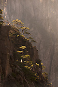 Huangshan Mountain Range, also known as Yellow Mountains, is a UNESCO World Heritage Site known for its scenery, sunsets, peculiarly-shaped granite peaks, Huangshan pine trees, hot springs, winter snow and views of the clouds from above, Anhui Province, China